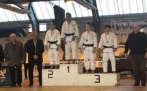 Tournoi «Excellence» de Nantes - Juniors (H/F)